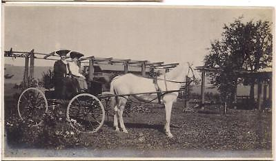 White Horse Carriage Victorian Fashion Hat Women By Arbor Vintage 1900s Photo