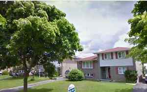 3+1 bdrm house in South London near White Oaks Mall - $1,550