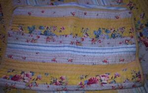ELENA BRUNELLI QUILTED BEDCOVER & SHAMS Strathcona County Edmonton Area image 3