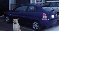 2009 Hyundai Accent Manual