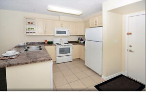 Two Bedroom Newly Renovated Condo for Rent U/G Parking Available
