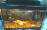 **~~ 10 GAL FISH TANK WITH EVERYTHING OR BEST OFFER~~**