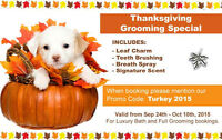 ** Thanksgiving Grooming SPECIAL ** FREE $16 add on