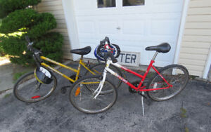 2 Youth Bicycles  Ready to Ride