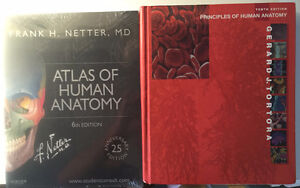 Human Musculoskeletal Anatomy Textbooks