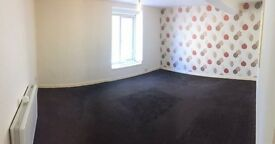 To Let 1 bedroom flat DSS Welcome