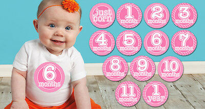 BABY GIRL Pink Monthly T-shirt Stickers Shower Gift /put on belly every month