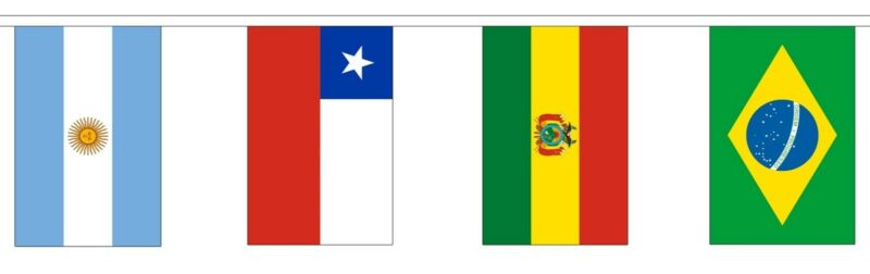 SOUTH AMERICAN NATIONS BUNTING 5 metres 12 flags Polyester flag BRAZIL ARGENTINA