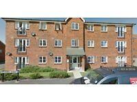 3 bedroom flat in Richards Street, Hatfield, AL10 (3 bed) (#216018)