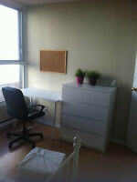 Room available in 4 1/2 apartment downtown MTL (near Concordia)