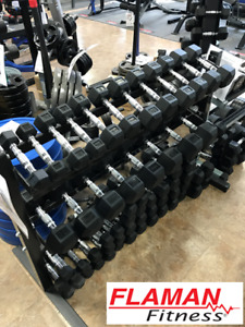 Dumbbells, Kettlebells, Weight Plates and Bars at Flaman Fitness
