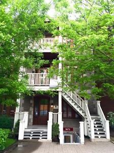 FULLY FURNISHED 2 BEDROOM FACING BEAUTIFUL PARC LAFONTAINE!