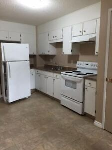 Clean, updated 3 bedroom townhouse in Vegreville AB