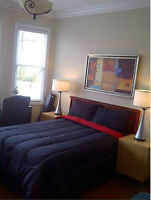 Large Furnished Room/-*June/July Move in*- Downtown/Fernwood