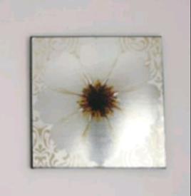 Canvas Picture X2
