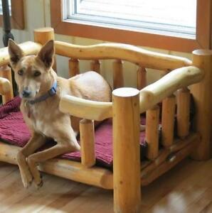 """Adult Female Dog - Shepherd-Whippet: """"Maggie"""""""