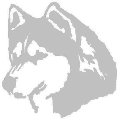 Tierpsychologie HUND Verhaltenstherapie Hundepsychologie Ausbildung Fernlehrgang