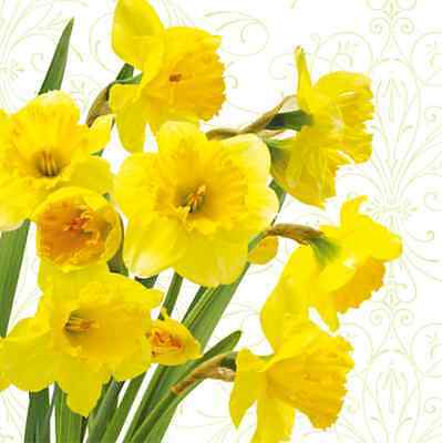 20 paper EASTER Napkins YELLOW DAFFODILS Flowers Spring Design Decoupage 33x33cm