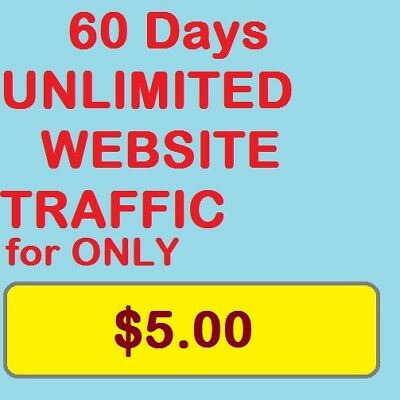 Unlimited Website Traffic For 60 Days 5