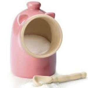 RSVP-Salt-Pig-Pink-stoneware-with-spoon