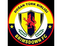 LOOKING FOR FOOTBALLERS FOR BRIMSDOWN FC (SEMI-PRO FOOTBALL)