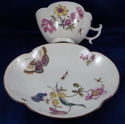 Rare Antique 18thC Meissen Porcelain Bug & Butterfly Floral Cup & Saucer 1750