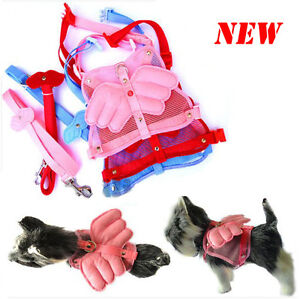 Lovely-Cute-Comfy-Angel-Wing-Style-Pet-Dog-Cat-Harness-Leash-Pet-Collars-PS01