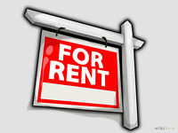 ROOM FOR RENT CLOSE TO LAURIER AND WATERLOO