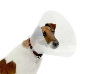 V Buster Clic 10cm head cone for small pets