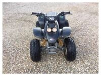 R100 quadzilla quad bike 100cc 2 stroke engine
