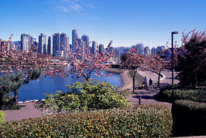 Big studio apartment West End (600 s.f.) Downtown-West End Greater Vancouver Area image 1