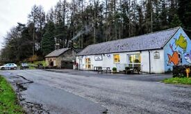 Bustling local village shop, tea room and charming cottage for sale in picturesque Scottish borders