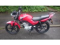 YAMAHA YBR 125cc 2008 MINT BIKE STANDARD & ORIGINAL CONDITION