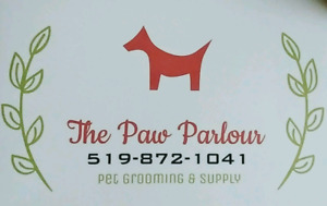 *Professional Pet Grooming in Stratford Ontario*