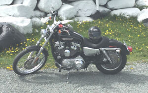 Harley Davidson XL 1200 C 2009