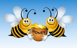 Small honey bee business for sale Regina Regina Area image 1