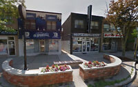 $1575 - High End 2 Bedroom/1 Bath in Port Credit - All Brand New