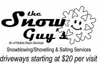 the Snow Guys -  Snowblower / Shovel & Salting Services