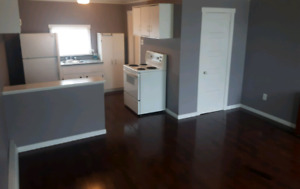 Clean quiet bachelor apartment available immediately.