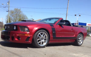 2007 mustang ford  gt