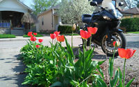 2009 Yamaha R6S, Raven Black, very clean and well cared for