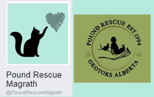 Pound Rescue Magrath!