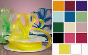 On Sale!!! Craft Sheer Ribbon Roll w/ multi colour 200yds