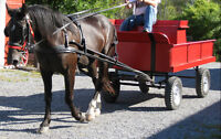 RED WAGON with SINGLE Shafts & TEAM Pole - Horse or Large Pony