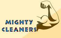 Mighty Cleaners PRESSURE WASHING SERVICES