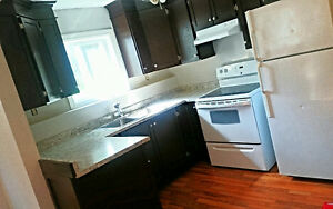 Newly Renovated 2 Bedroom Apartment. *Available Jan 1st