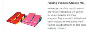Anyone selling??  Looking to buy an incline mat (cheese)