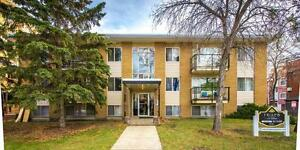 Frisco Apartments Now Renting 1 Bedroom Units Edmonton Edmonton Area image 1