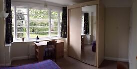 Clean and quiet double bedroom, all inclusive room