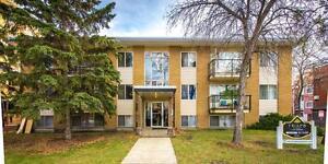 Frisco Apartments Now Renting 1 Bedroom Units Edmonton Edmonton Area image 1